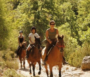 Villas_du_Verdon_omgeving_1_Frankrijk_Provence_Castellane_parc_vakantiepark_luxe_vakantievillas_zwembad_paardrijden_kinderen 1200x7